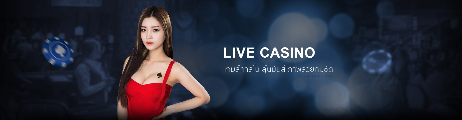 Live Casino เกมส์คาสิโนสด ฟรีโบนัส